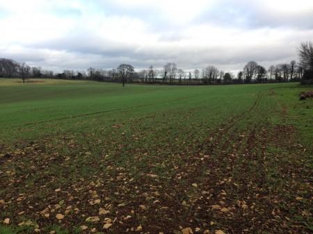 Farmland valuation