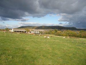 Windmill farm, Alderton