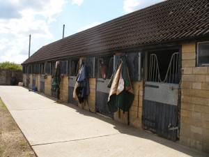 Stables are subject to business rates