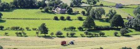 Image used for Rural Chartered Surveyor blog