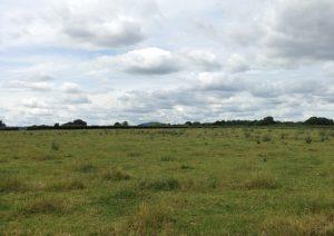 Land at Hallow