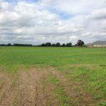 113 acres at Moreton Valence
