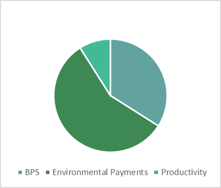 2024 - BPS 34%, Environmental 57%, Productivity 9%